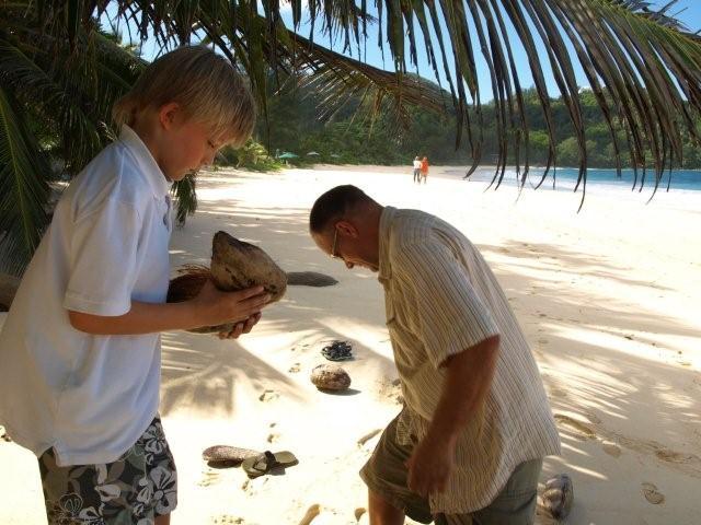 Jagten på de bedste kokosnødder
