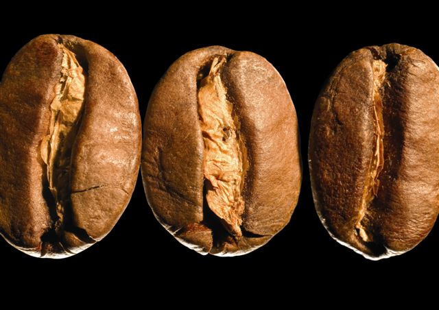Kaffe i din creme giver ro til huden ...